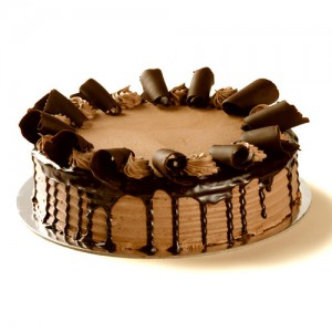 chocolatefudgetorte13